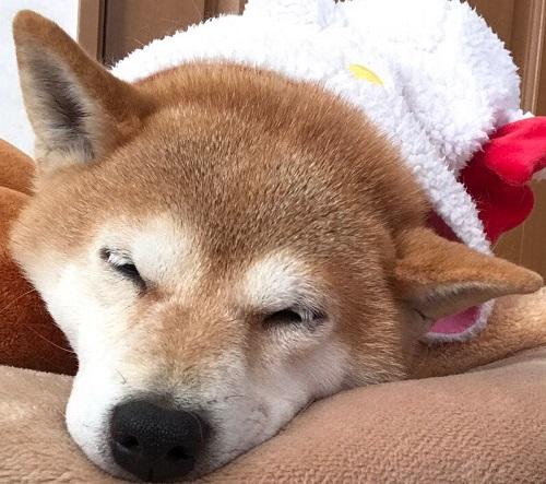 12月の顔o.jpg