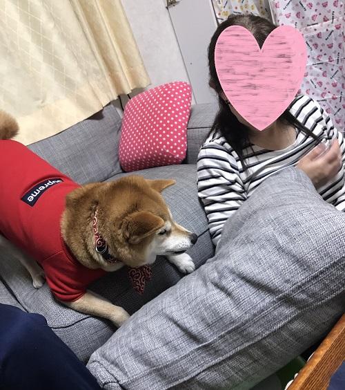 ママ待ちl.jpg