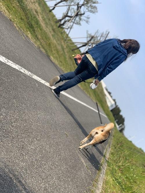 自粛散歩c.jpg