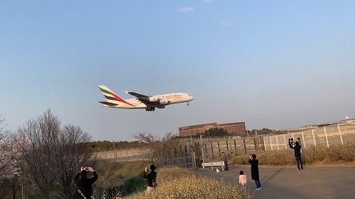 飛行機と1h.jpg