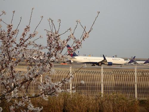 飛行機と1k.jpg